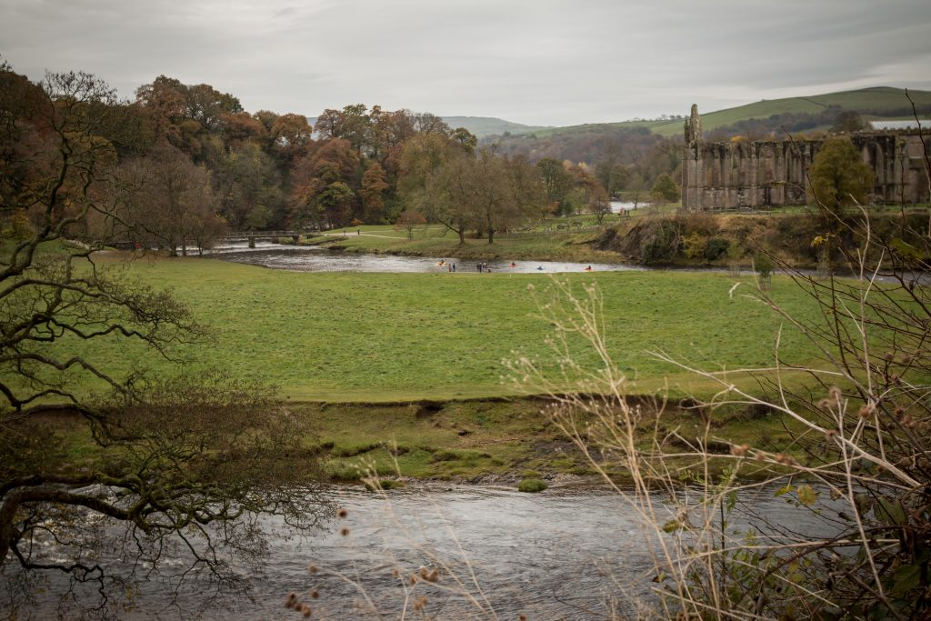 20161113_bolton-abbey-34