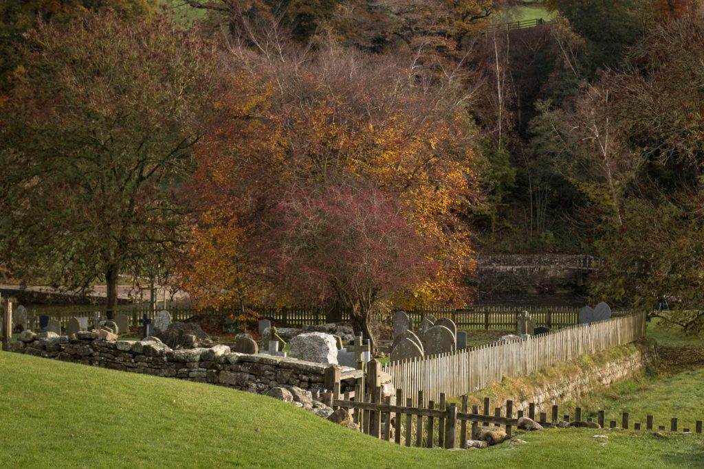 20161113_bolton-abbey-5